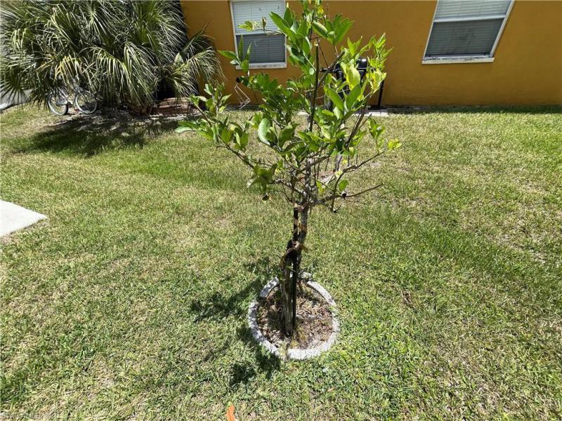 10730 Bahia Terrado Cir, Estero, Fl 33928