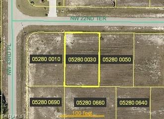 4206 Nw 22nd Terrace, Cape Coral, Fl 33993