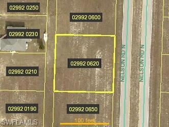 2916 Nelson Road, Cape Coral, Fl 33993
