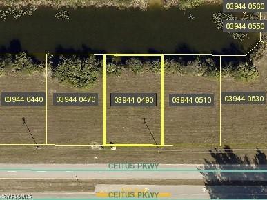 2913 Ceitus Parkway, Cape Coral, Fl 33991