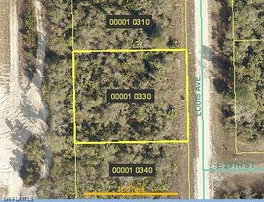 2901 Louis Avenue, Alva, Fl 33920