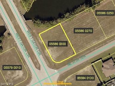1131 Ne 37th Terrace, Cape Coral, Fl 33909